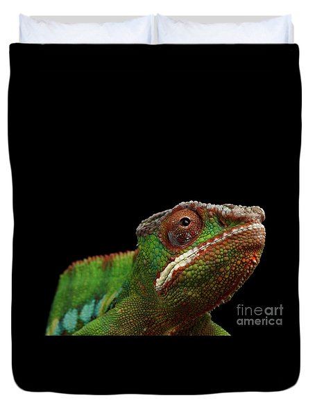 Closeup Head Of Panther Chameleon, Reptile In Profile View Isolated On Black Background Duvet Cover by Sergey Taran