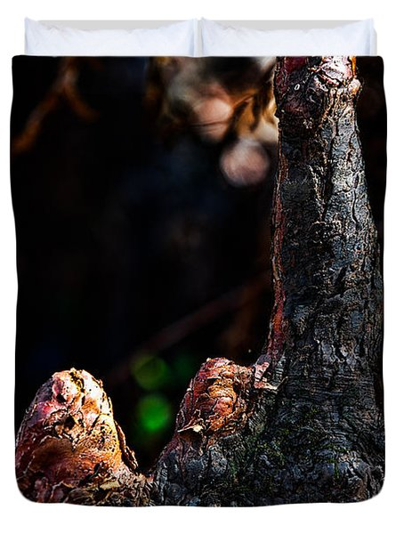 Cypress Knees Duvet Cover by Christopher Holmes