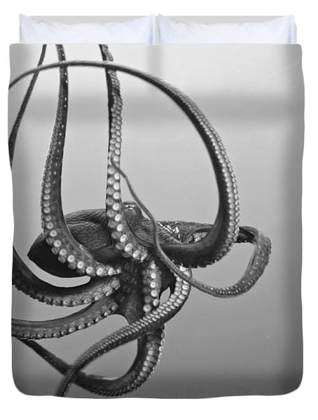 Day Octopus Duvet Cover by Dave Fleetham - Printscapes