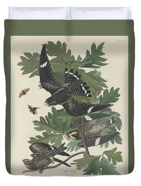 Night Hawk Duvet Cover by John James Audubon