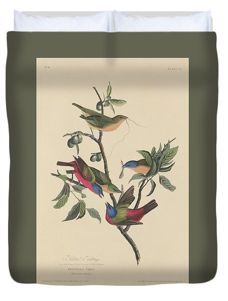Painted Bunting Duvet Cover by John James Audubon