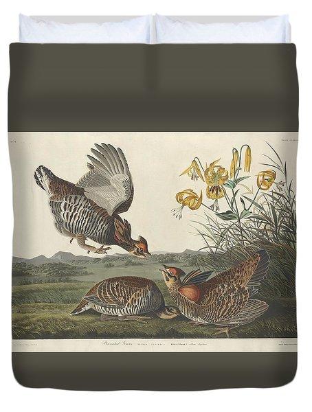 Pinnated Grouse Duvet Cover by John James Audubon
