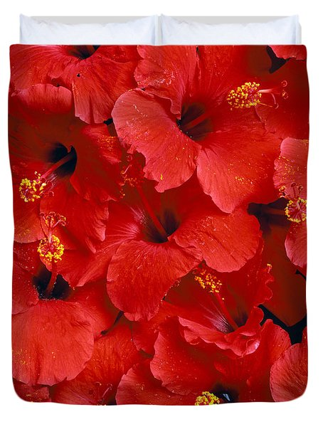 Red Hibiscus Duvet Cover by Tomas del Amo - Printscapes