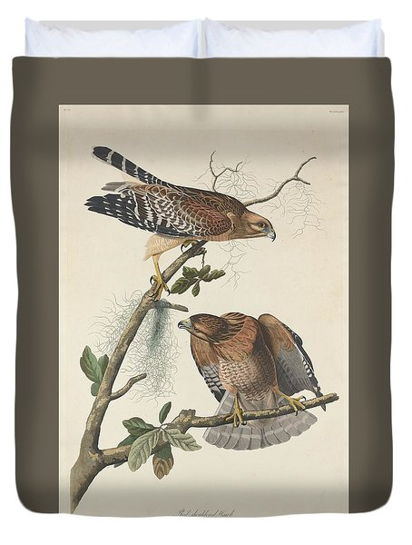 Red Shouldered Hawk Duvet Cover by John James Audubon