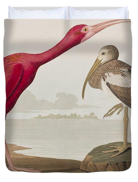 Scarlet Ibis Duvet Cover by John James Audubon