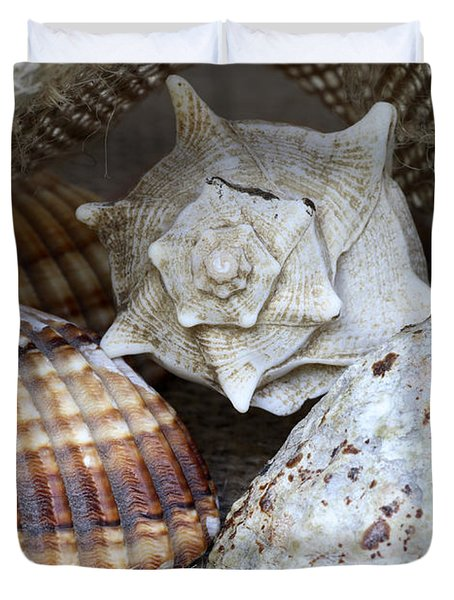 Seashells Duvet Cover by Frank Tschakert