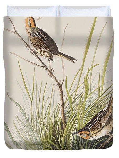 Sharp Tailed Finch Duvet Cover by John James Audubon