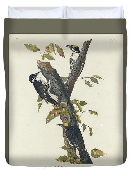 Three-toed Woodpecker Duvet Cover by John James Audubon