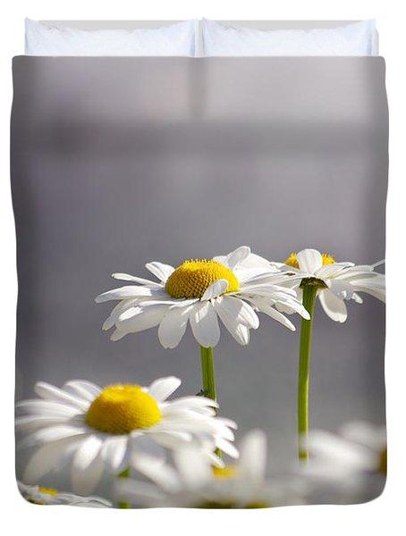 White Daisies Duvet Cover by Carlos Caetano