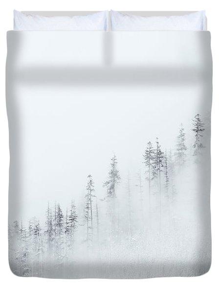 Winter Veil Duvet Cover by Mike  Dawson