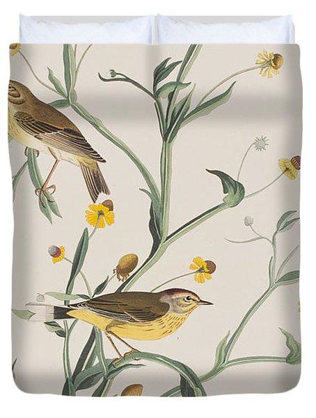 Yellow Red-poll Warbler Duvet Cover by John James Audubon