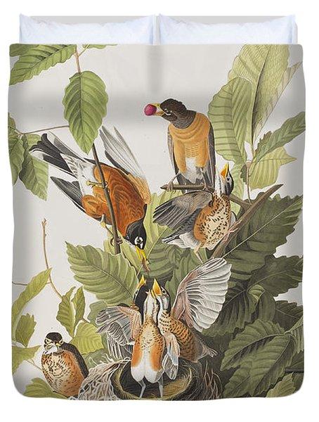 American Robin Duvet Cover by John James Audubon