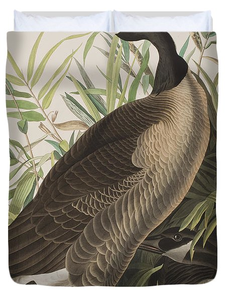 Canada Goose Duvet Cover by John James Audubon