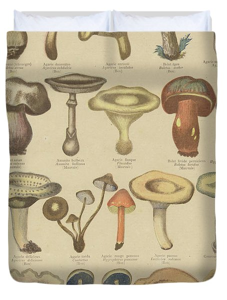 Edible And Poisonous Mushrooms Duvet Cover by French School