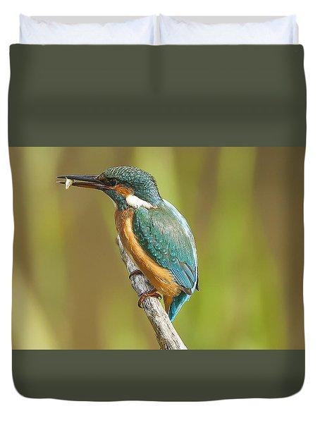 Kingfisher Duvet Cover by Paul Neville