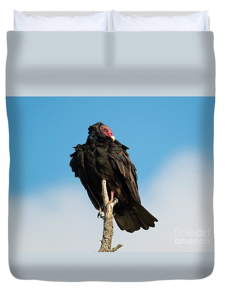 Looking For A Meal Duvet Cover by Mike Dawson