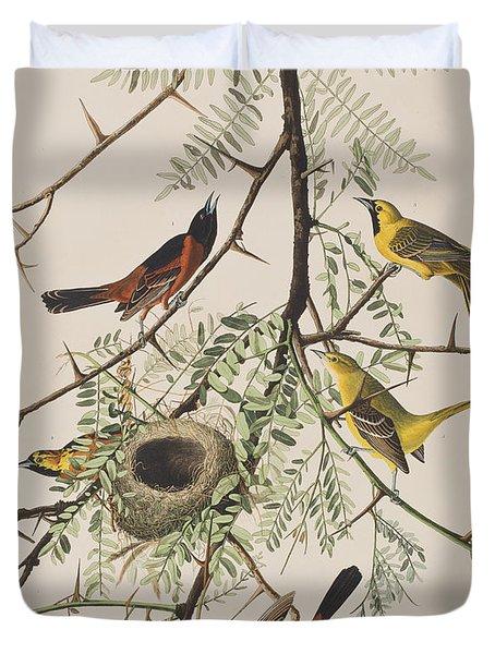 Orchard Oriole Duvet Cover by John James Audubon