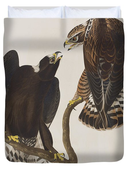 Rough-legged Falcon Duvet Cover by John James Audubon
