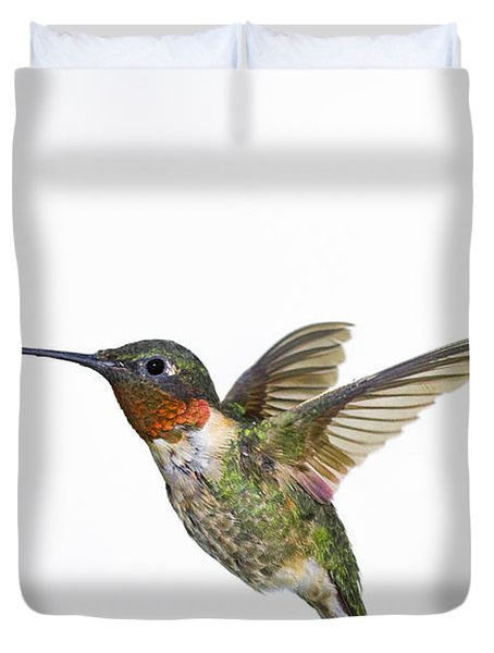 Ruby-throated Hummingbird Archilochus Duvet Cover by Thomas Kitchin & Victoria Hurst