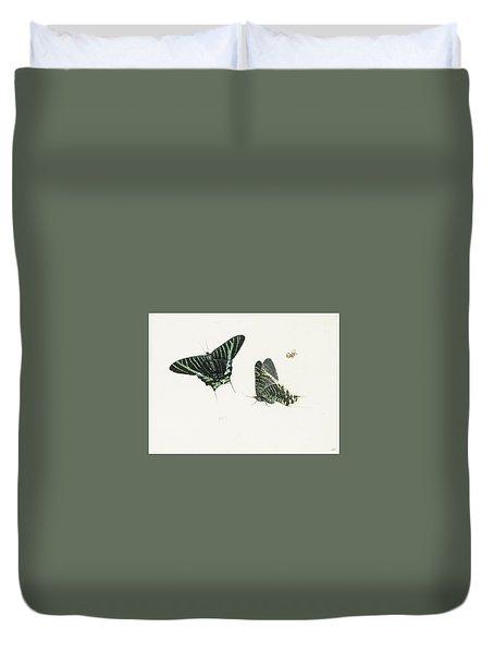 Studies Of Two Butterflies Duvet Cover by Anton Henstenburgh