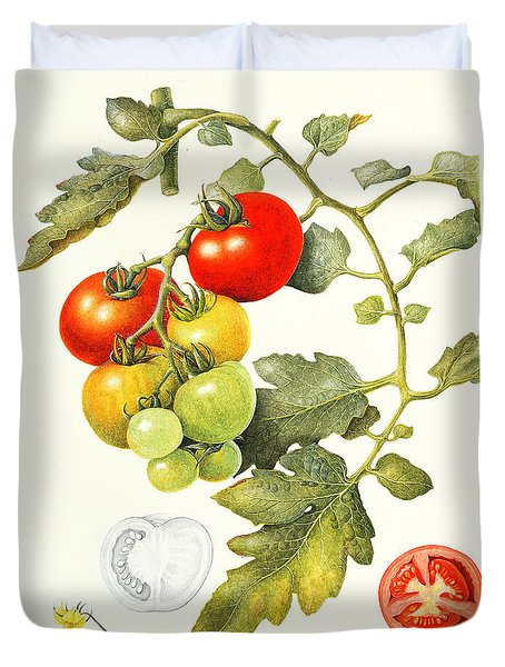 Tomatoes Duvet Cover by Margaret Ann Eden