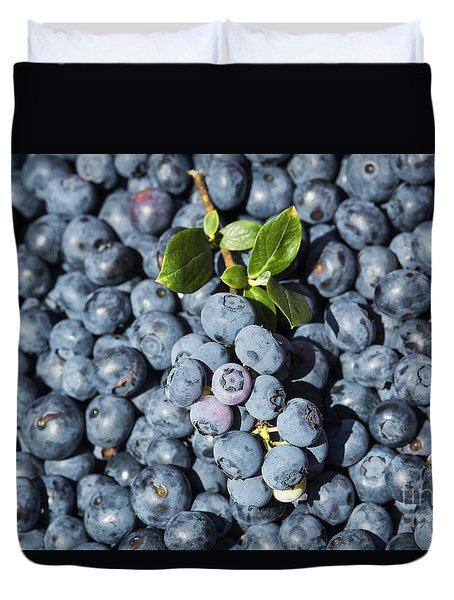 Blueberry Harvest Duvet Cover by John Greim