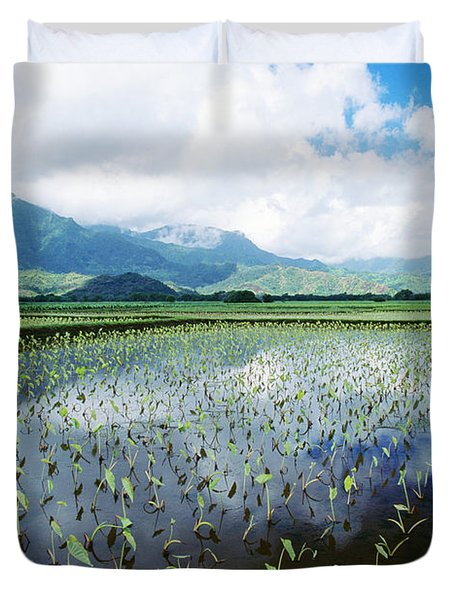 Kauai, Wet Taro Farm Duvet Cover by Bob Abraham - Printscapes