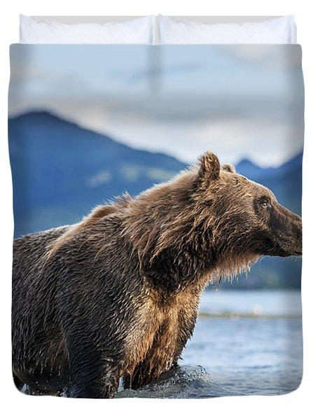 Coastal Brown Bear  Ursus Arctos Duvet Cover by Paul Souders