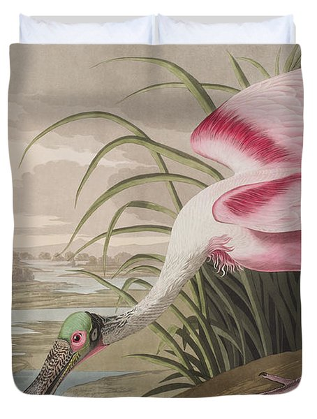 Roseate Spoonbill Duvet Cover by John James Audubon