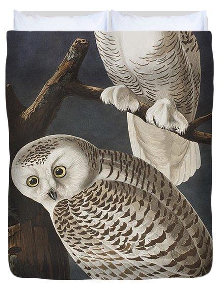 Snowy Owl Duvet Cover by John James Audubon