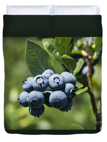 Blueberry Bush Duvet Cover by John Greim