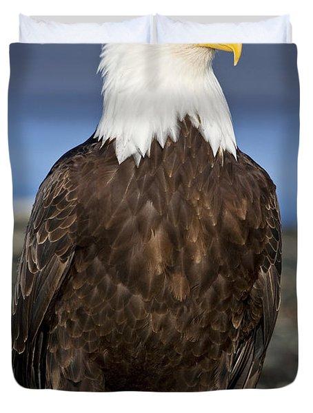 A Bald Eagle Duvet Cover by John Hyde - Printscapes