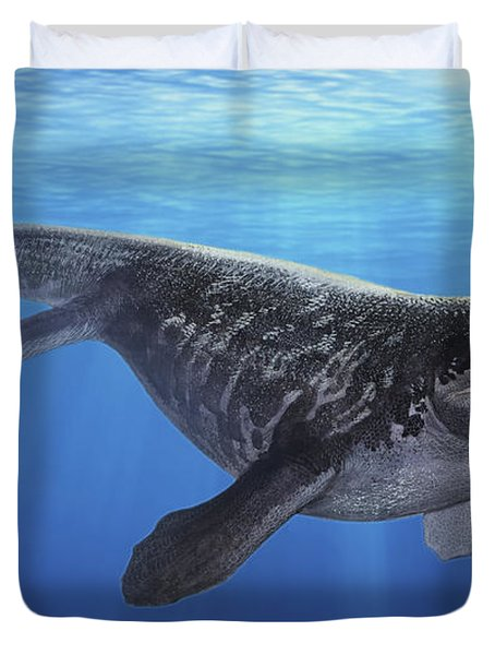 A Prognathodon Saturator Swimming Duvet Cover by Sergey Krasovskiy