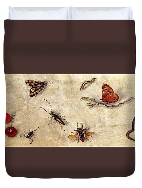 A Study Of Various Insects, Fruit And Animals Duvet Cover by Jan Van Kessel the Elder
