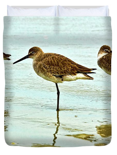 A Trio Duvet Cover by Christopher Holmes