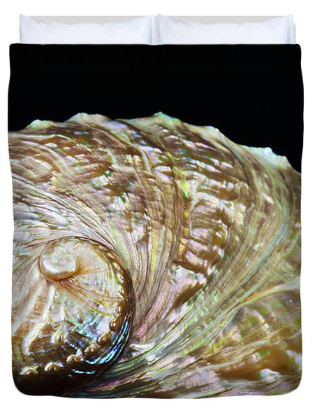 Abalone Shell Duvet Cover by Bill Brennan - Printscapes