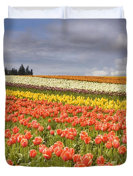 Across colorful fields Duvet Cover by Mike  Dawson
