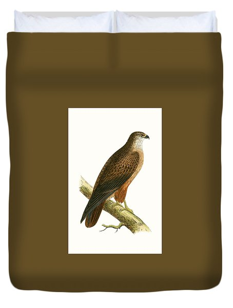 African Buzzard Duvet Cover by English School