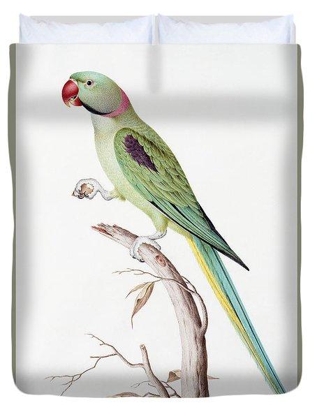 Alexandrine Parakeet Duvet Cover by Nicolas Robert