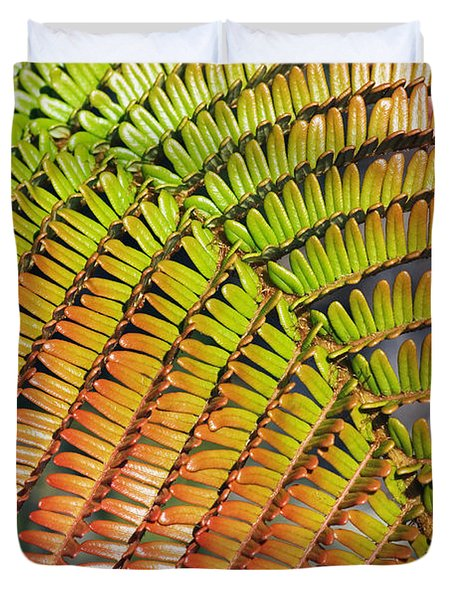 Amaumau Fern Frond Duvet Cover by Greg Vaughn - Printscapes
