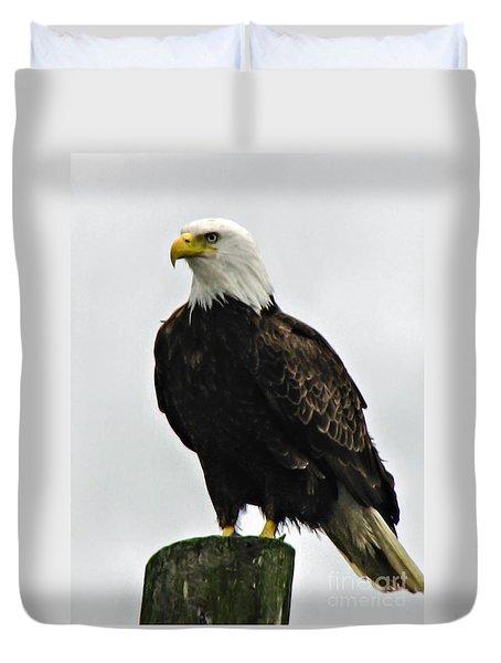 American  Bird Duvet Cover by Robert Bales