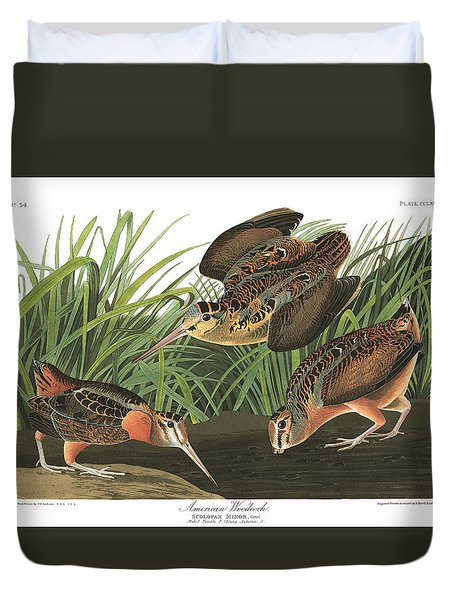 American Woodcock Duvet Cover by John Audubon