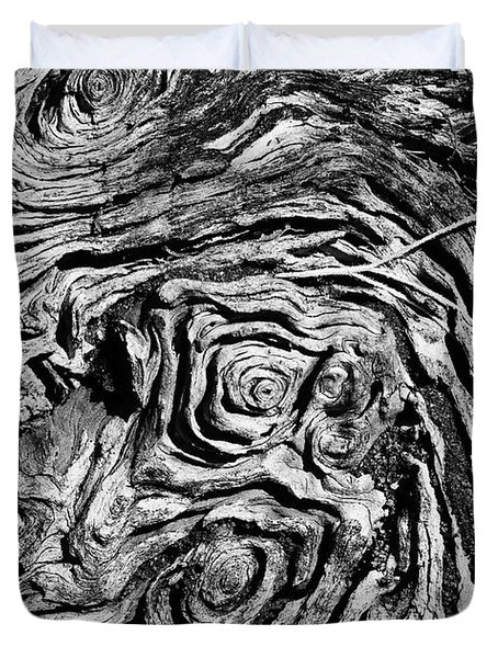 Ancient Stump Duvet Cover by Christopher Holmes