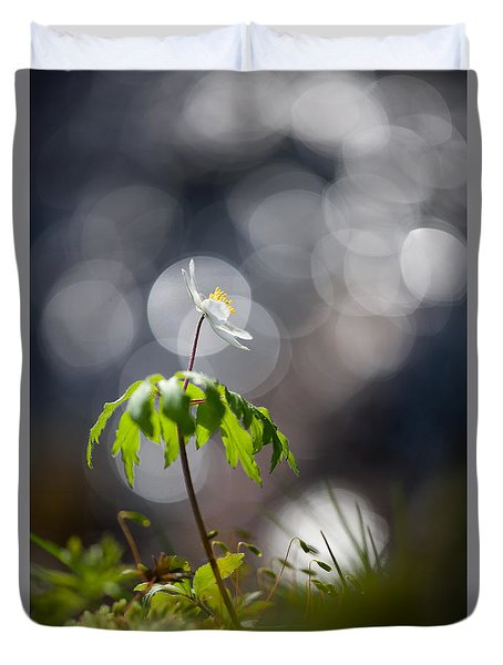 Anemone  Duvet Cover by Rikard Strand