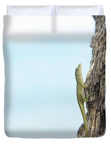 Anole Lizard Duvet Cover by Brandon Tabiolo - Printscapes