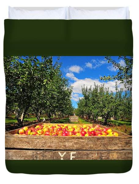 Apple Picking Season Duvet Cover by Catherine Reusch  Daley