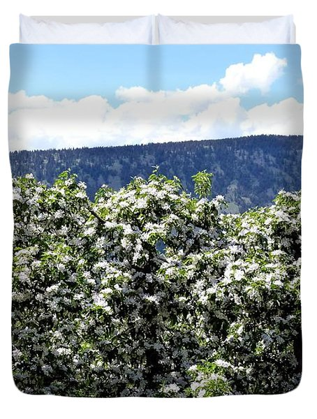 Apple Trees In Bloom     Duvet Cover by Will Borden
