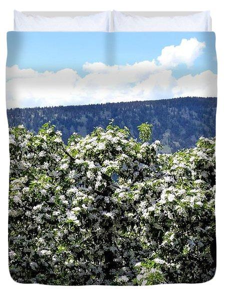 Apple Trees In Bloom     Duvet Cover by Will Borden