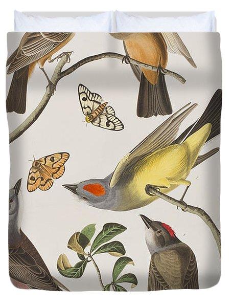 Arkansaw Flycatcher Swallow-tailed Flycatcher Says Flycatcher Duvet Cover by John James Audubon