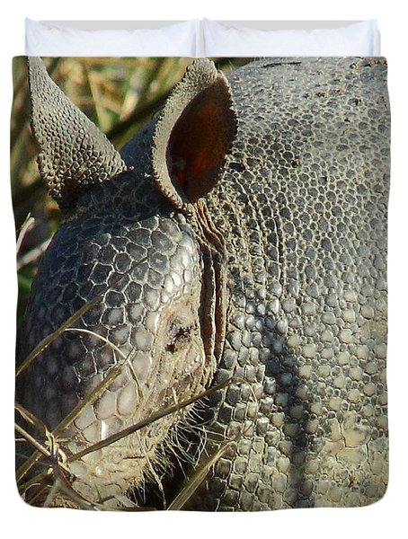 Armadillo By Morning Duvet Cover by Robert Frederick